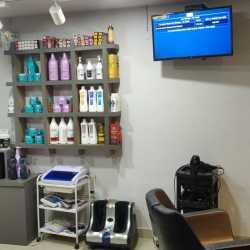 Tulip Beauty Salon & Spa