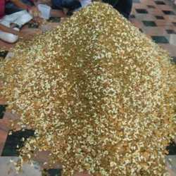 Shree Swaminarayan Mukhya Mandir