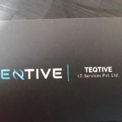 Teqtive It Services Pvt Ltd