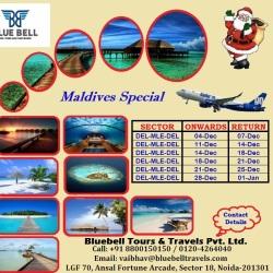 Bluebell Tour Travels Pvt Ltd