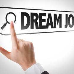 Amfly Career Outsourcing